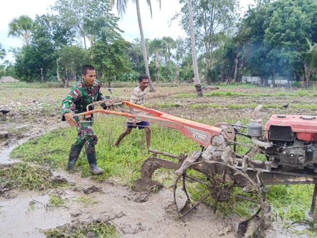 Aksi Kopda Jupri Menggemburkan Lahan Kebun Milik Bapak Agustinus di Tapal Batas