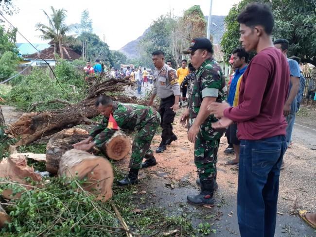 Hujan Deras dan Angin Puting Beliung Tumbangkan Atap Rumah dan Pohon di Bima