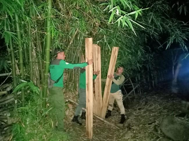 TNI, Polri dan KPH Batu Lante Amankan BB di Kawasan Hutan Jati Sumbawa