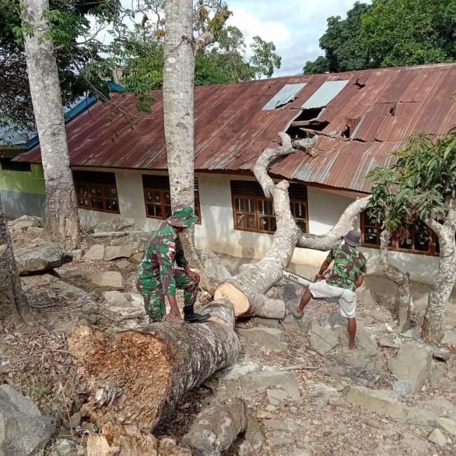 TNI Bantu Sekolah di Perbatasan Yang Tertimpa Pohon Tumbang